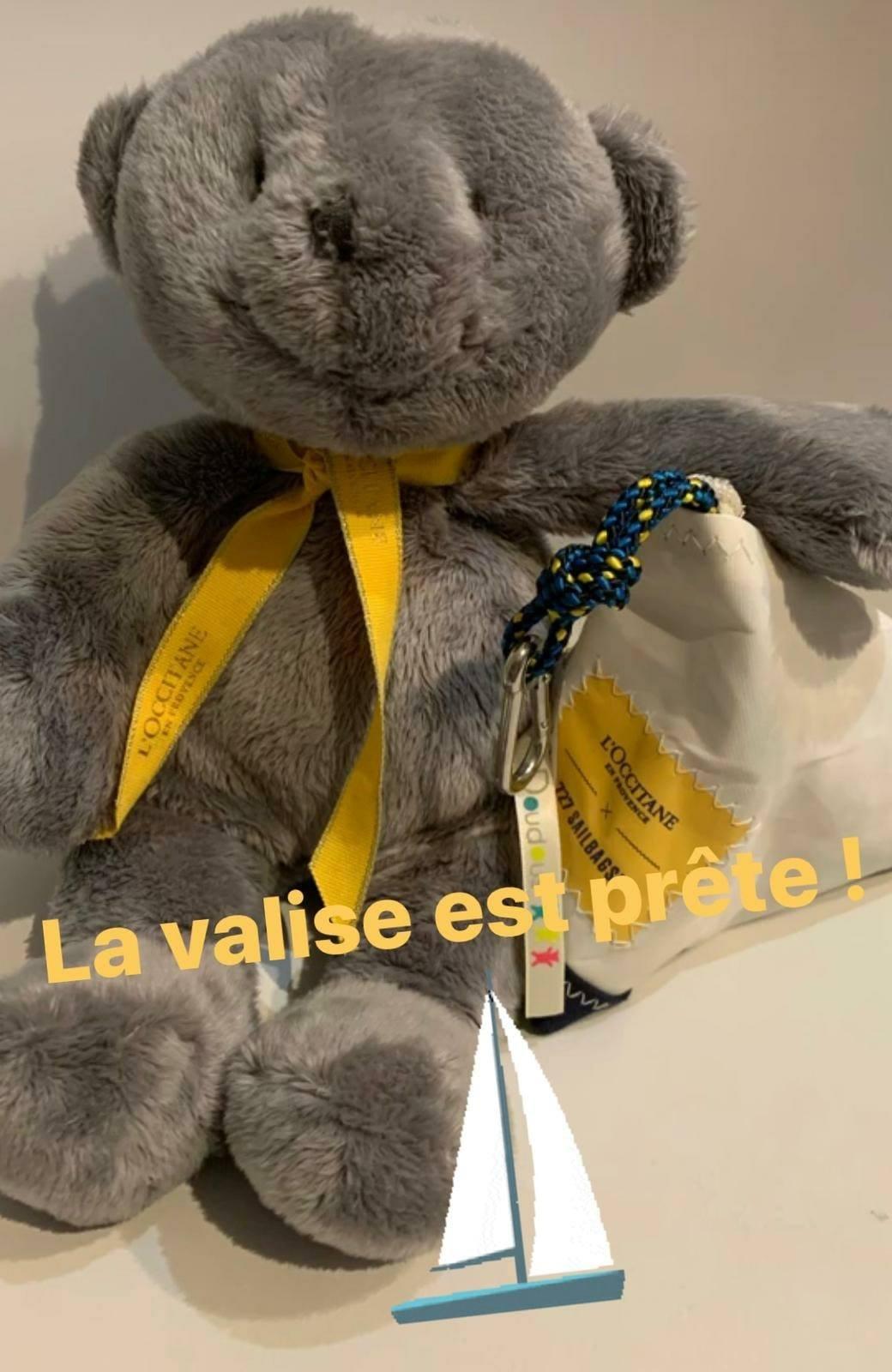 gris_valise